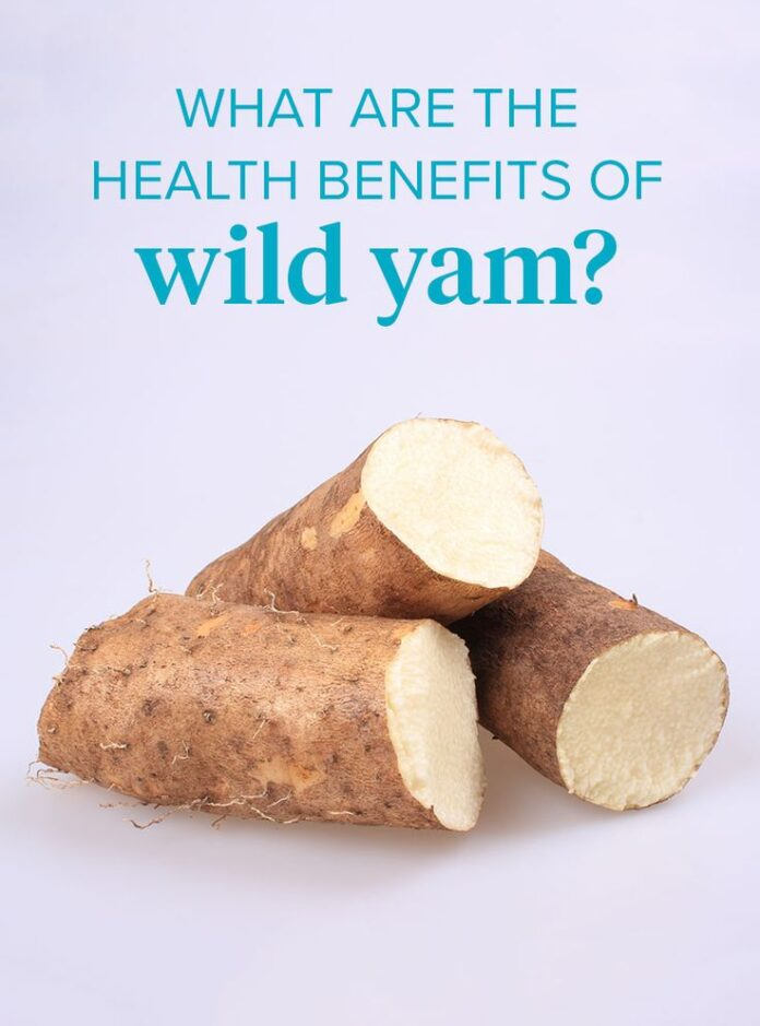 Health Benefits of Wild Yam