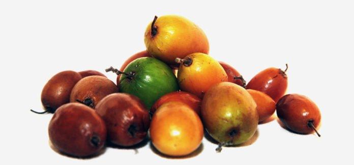 Health benefits of jujube