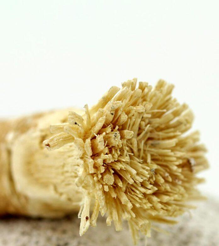 Health benefits of miswak