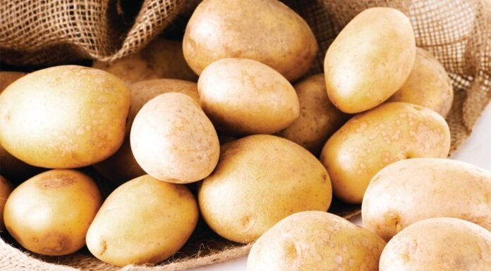 Potato Recipes For Good Physique
