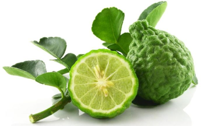 Bergamot essential oil: Health benefits