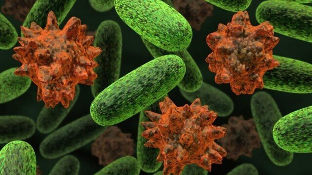 E. coli infection treatment