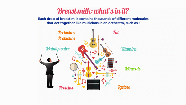 Composition of breast milk
