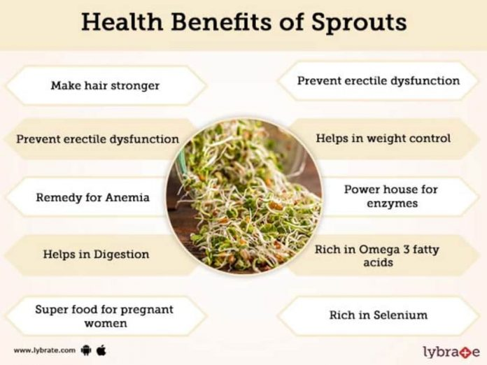 Here are some health benefits of sprouts
