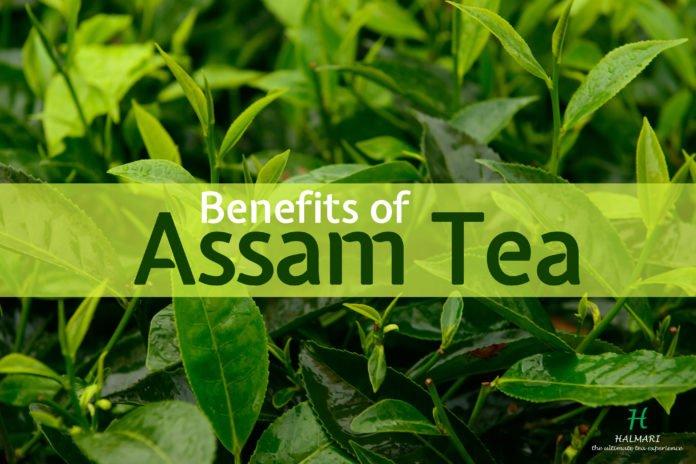 Health benefits of Assam tea