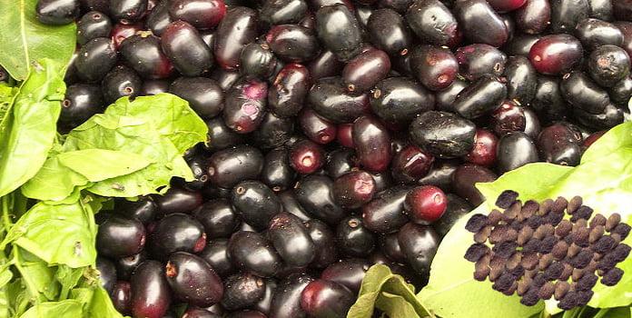 Health benefits of Eugenia jambolana