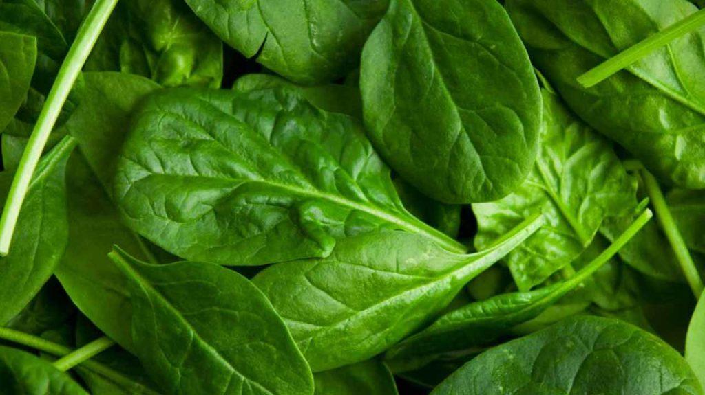 8 Amazing health benefits of amunututu