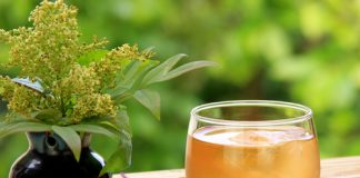 Health benefits of barley teas