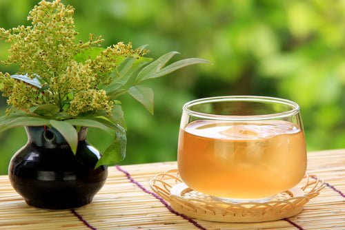 Health benefits of barley teas