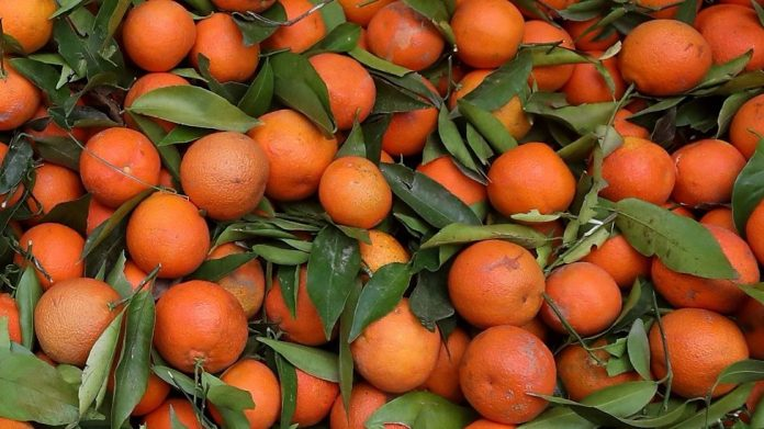 Health benefits of clementine