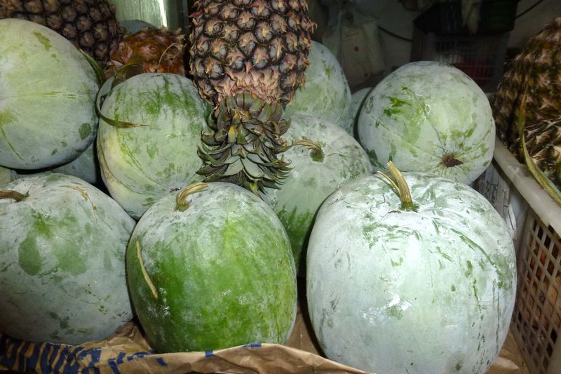 Health benefits of hairy gourd1