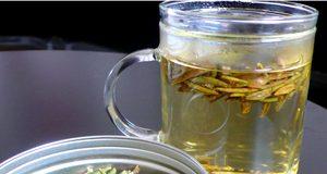 Health benefits of labrador tea