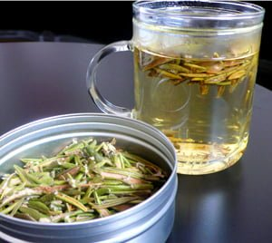Health benefits of labrador tea
