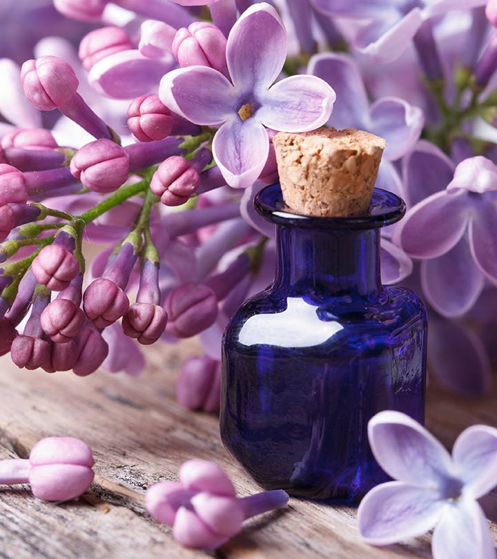 Health benefits of lilac essential oil