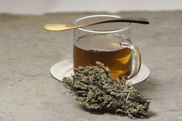 Health benefits of mugwort tea
