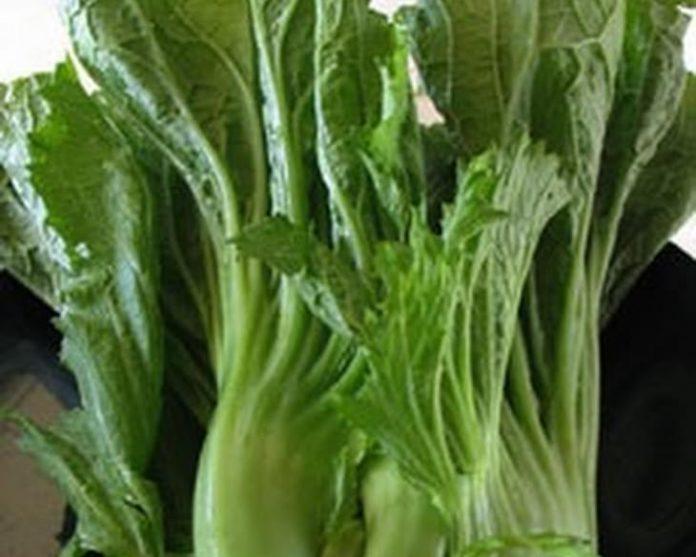 Health benefits of mustard greens