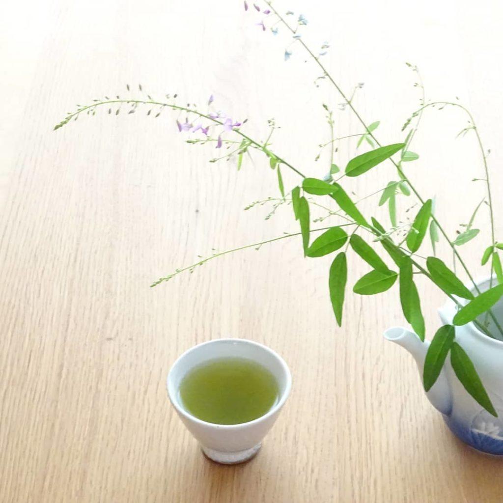 Health benefits of sencha tea
