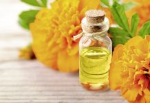Health benefits of tagetes essential oil