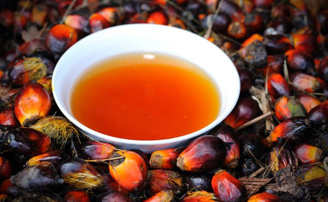 Health benefits of the Malaysian red palm oil