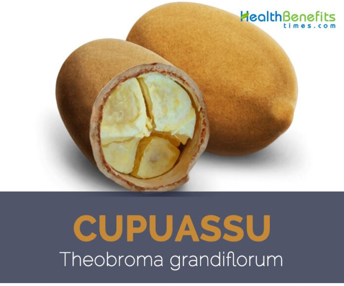 Health benefits of the cupuacu fruit