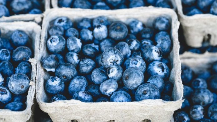 Health benefits of wild blueberries1