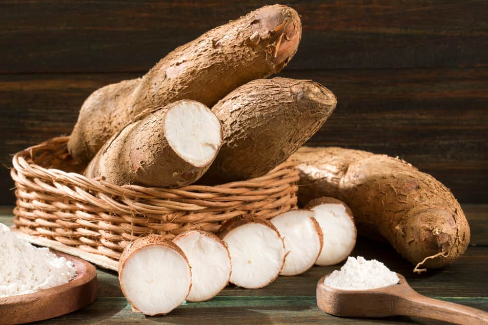 Health benefits of yucca root