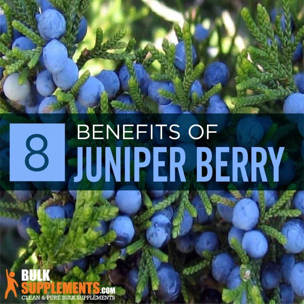 Health benefits of Juniper berries