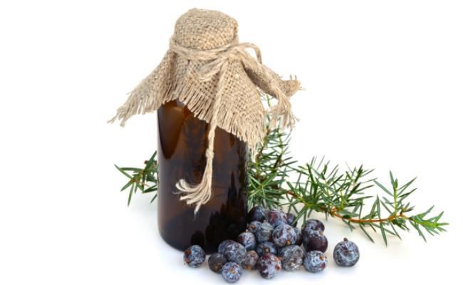 Juniper Berry Essential Oil: 5 Incredible Healthy Benefits