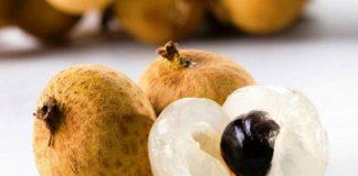 longan fruit benefits