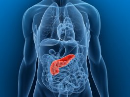 Natural cures for pancreatitis