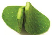 Health benefits of nopales