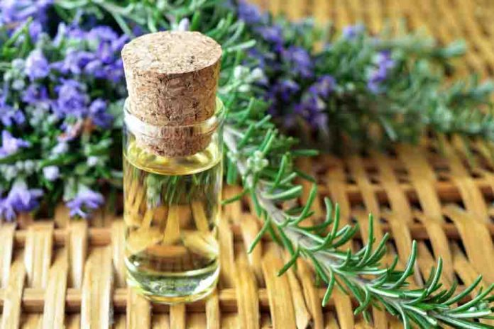 oregano essential oil health benefits