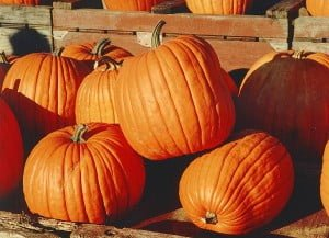 pumpkin, Home Remedies and Natural cures