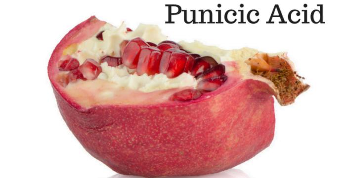 punicic acid