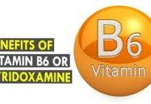 Pyridoxamine, Vitamin B6