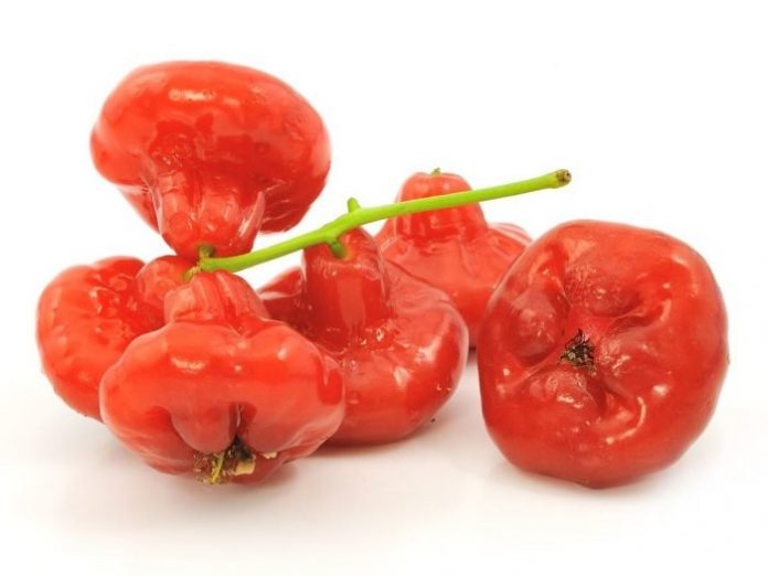 rose apples health benefits