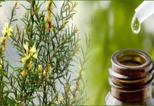 Heath benefits of tea tree oil