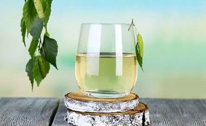 Health benefits of birch water