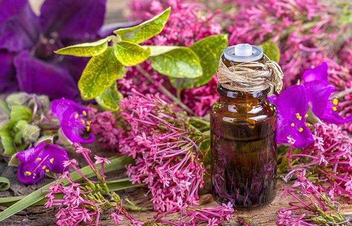 how to make sage essential oil at home