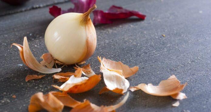 health benefits of Onion Skin