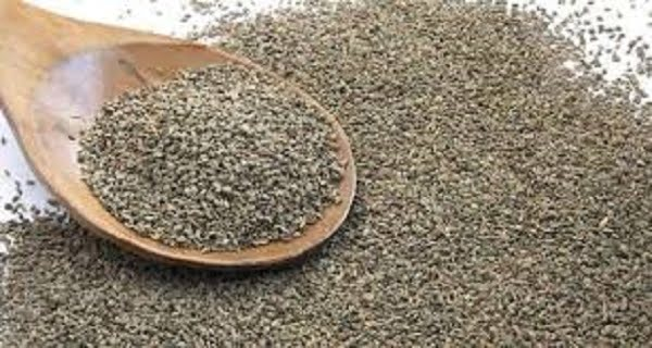 ajwain benefits in hindi