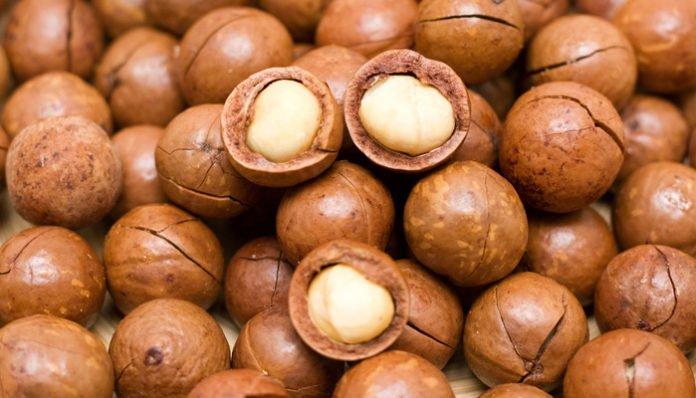 Health benefits of macadamia nut oil