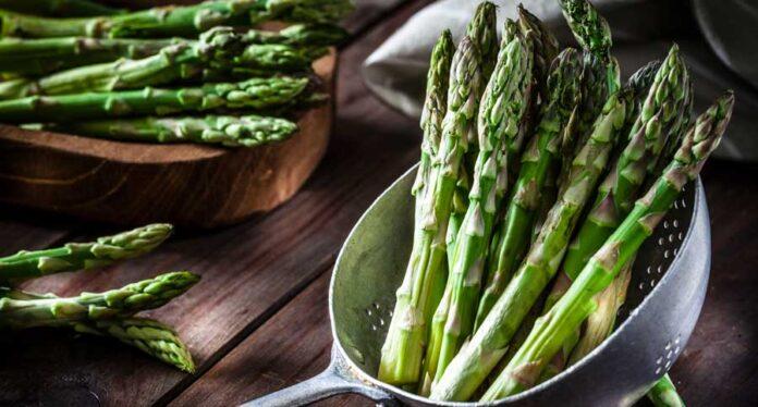 Asparagus Recipes for Good Physique