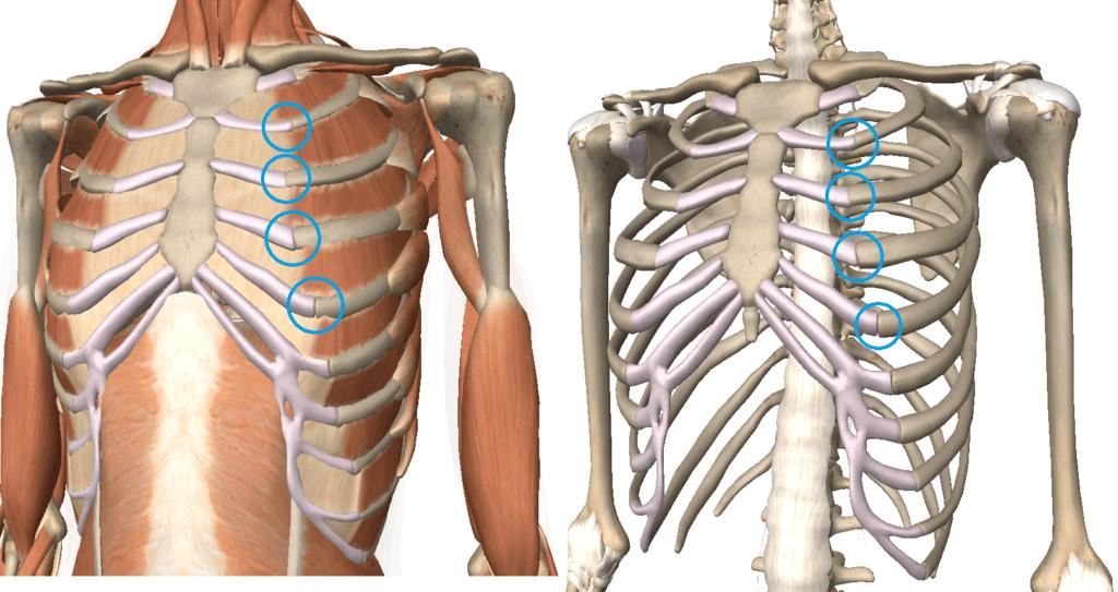 back rib pain