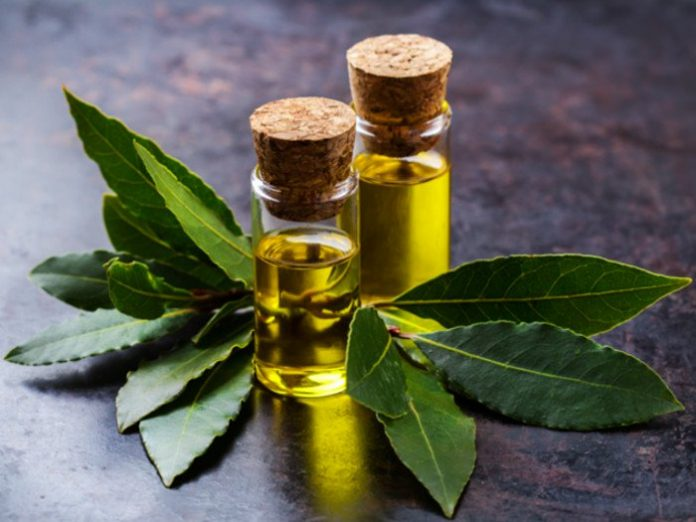 bay essential oil health benefits