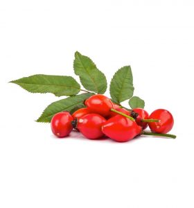Health benefits of rosehip oil