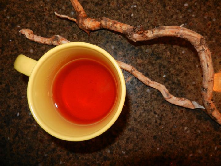 Health benefits of sassafras tea