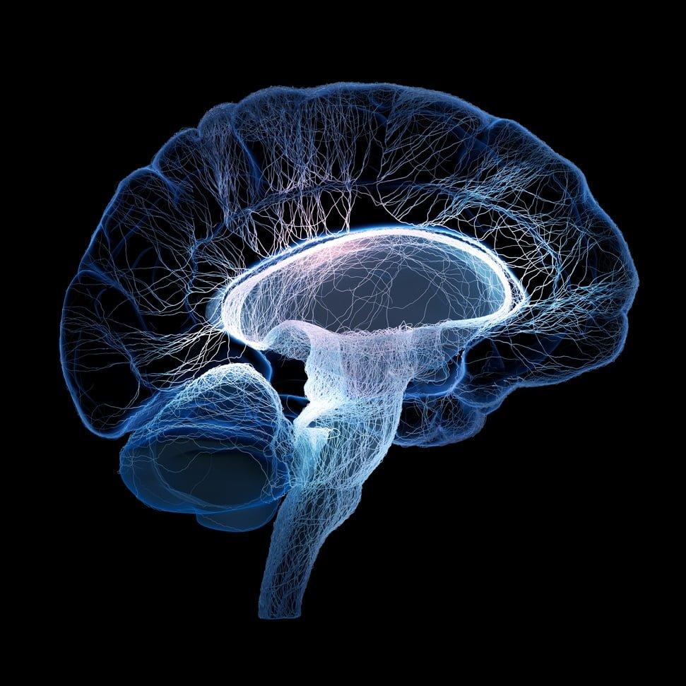 brain tumor home remedy