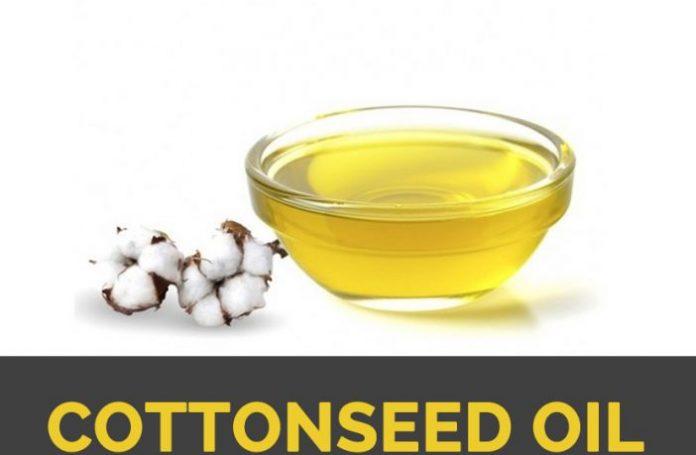 cotton seed milk health benefits