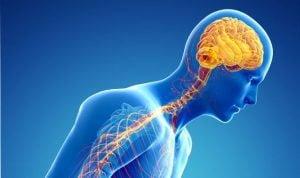 Natural cures for Parkinson's disease